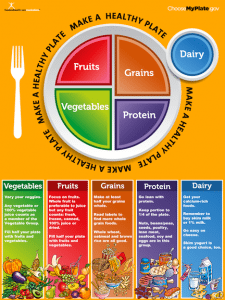 Food and Health Communications | Free My Plate Materials