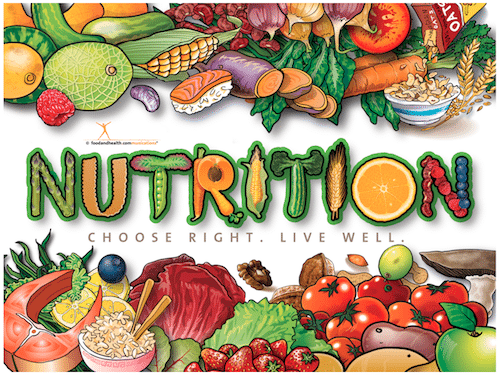 essays on nutrition and health