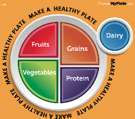 what are the five main food groups | Food