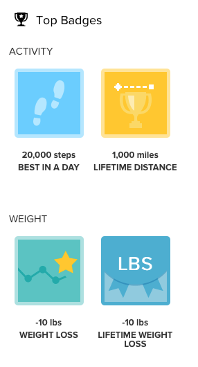 Fitbit Badges Earned