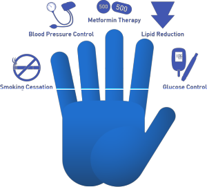 The 5 Priorities in the Hand Model
